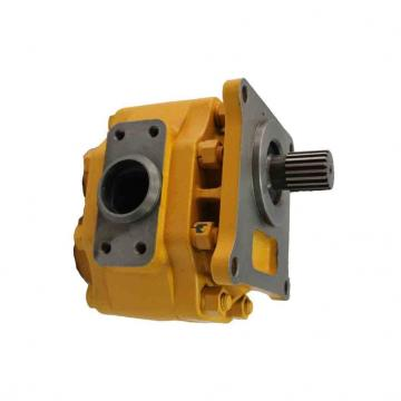 Orsta C40-2 Pompe Hydraulique Double Tous les Jours 10859 À Zahnradmotor