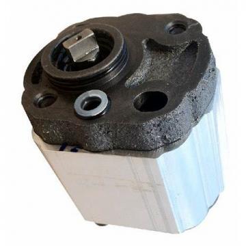 Orsta A40 R Pompe Hydraulique Double Tous les Jours 10859 À Zahnradmotor