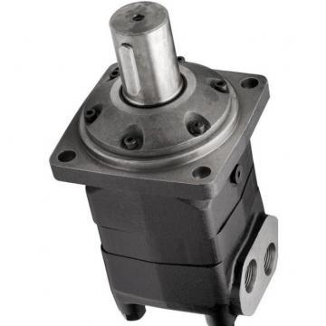 Unbranded moteur hydraulique ffpmv Series