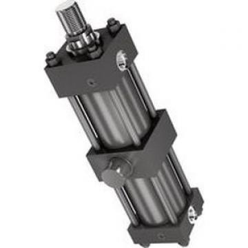 """Rexroth P177771, MS2-HH 2 X 4 Hydraulic Cylinder 2""""ID x 4"""" Stroke"""