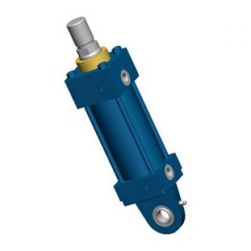 NEW Bosch Rexroth PC R480144849 Hydraulic Cylinder 3-1/4'' x 12'' Mod C-MS4-HH-C