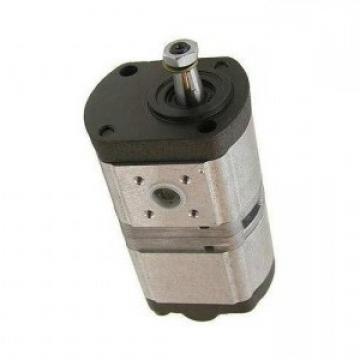 Pompe Hydraulique Bosch 0510665389 pour Renault Ares 610 620 630 640 540RX 550RX