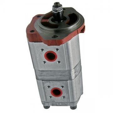 Pompe Hydraulique Bosch 0510525342 Pour Landini 6860-9880 Advantage Blizzard Rex