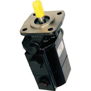 BRUENINGHAUS Pompe A4VS0125DR/22R-PPB13N00 Pompe Hydraulique