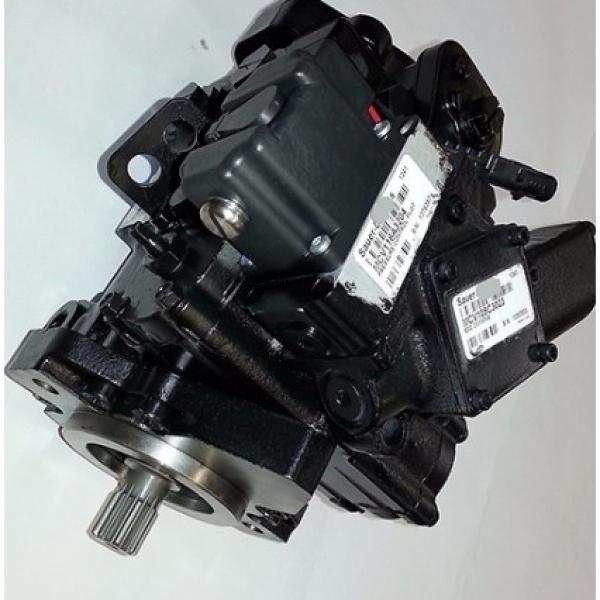 Unbranded moteur hydraulique FFPM Série #1 image