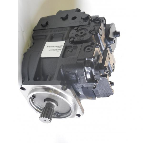 Unbranded moteur hydraulique FFPM Série #3 image