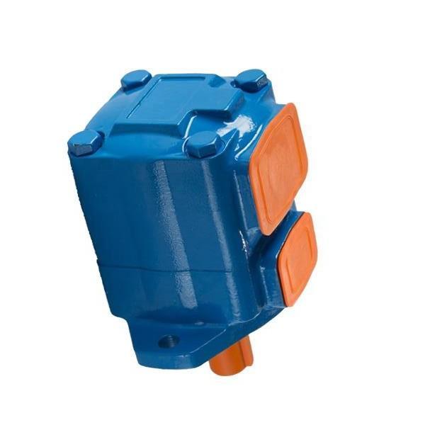 500-417-100 Raymond Pompe Hydraulique Vickers 500417100 SK-38161711J #1 image