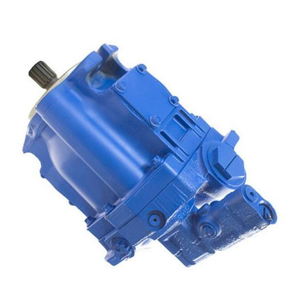 707277-C, vane PUMP 19.5 cc/R -172 bar bspp ports, Eaton Vickers hydraulique valve #1 image